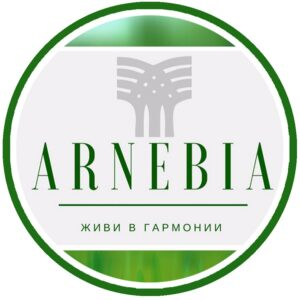 Арнебия